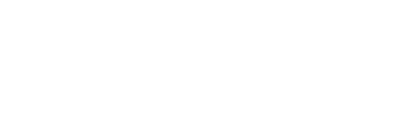 PIPL.SYSTEMS | Security systems